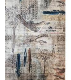 "Tim Holtz Fabric: Aviary 18""x44"""