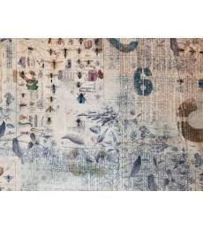 Tim Holtz Fabric:1 yard cut, Wallflower,Entomology